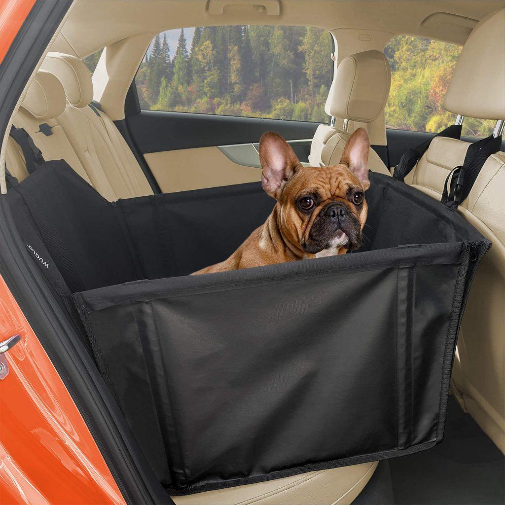 fotelik-samochodowy-dla-buldoga.jpg
